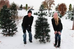 Our first christmas tree in Edmond OK